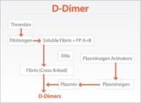 TEST FOR D-DIMER