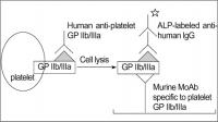 PLATELET GLYCOPROTEIN ANALYSIS