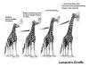 Organic Evolution (Lamarckism)